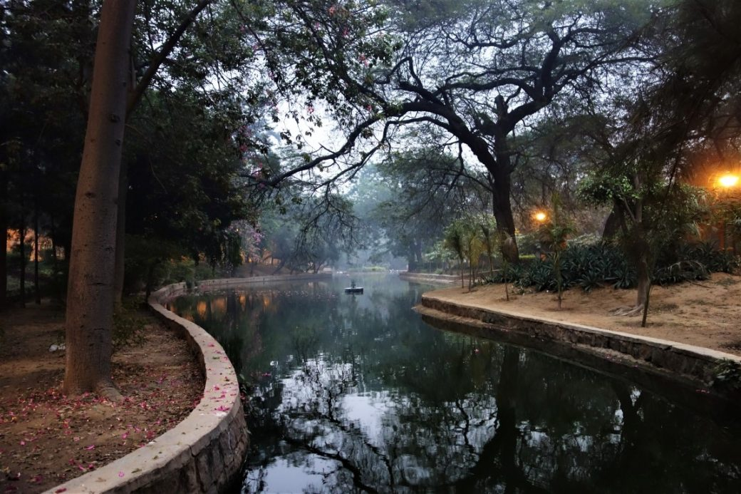 Lodi gardens in the smog