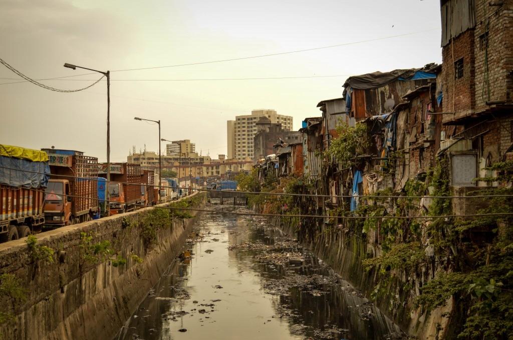 Mumbai – Slumcat Millionaire