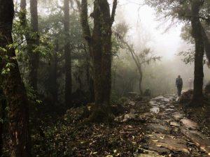 trekking from Pokhara from australia camp