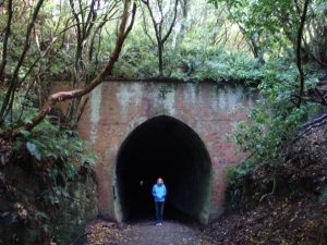 things to do in the Catlins tunnel hill