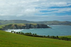 things to do in the Catlins porpoise bay