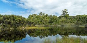 things to do in the Catlins lake wilkie